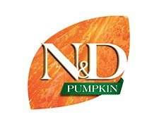 nd-pumpkin